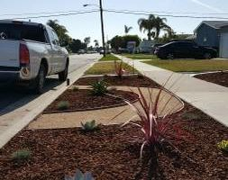 Photo #6: Modern Concepts. WE SPECIALIZE IN DROUGHT TOLERANT LANDSCAPES AND DESIGNS