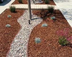 Photo #2: Modern Concepts. WE SPECIALIZE IN DROUGHT TOLERANT LANDSCAPES AND DESIGNS