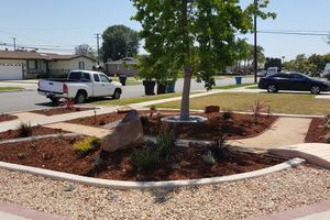 Photo #1: Modern Concepts. WE SPECIALIZE IN DROUGHT TOLERANT LANDSCAPES AND DESIGNS