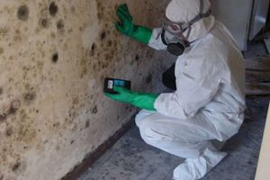 Photo #2: CERTIFIED MOLD REMEDIATION