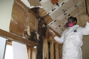 Photo #3: CERTIFIED MOLD REMEDIATION