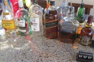 Photo #15: Private Event Bartender