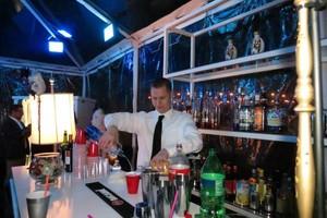 Photo #21: Private Event Bartender