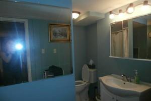 Photo #9: Painting/Handyman/Carpentry/Hauling/Demolition-20 Yrs Experience!