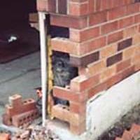 Photo #4: Shapiro's Roofing & Tuckpointing. $199 leak repair