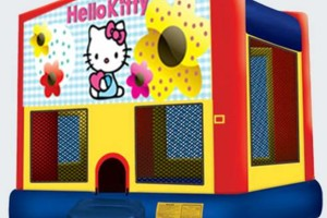 Photo #12: $49 Bounce House Rental / $99 Bounce/Slide Combo Rental (all day)