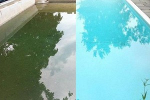 Photo #3: Crystal Cleaning Pool & Spa Service Specials