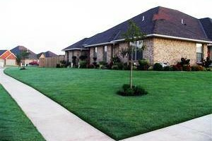 Photo #2: $40 TO TRIM MOW AND BLOW YOUR FRONT AND BACK YARD