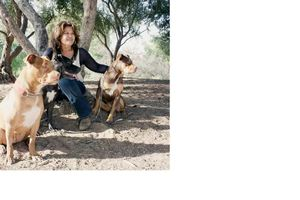 Photo #1: $25 Dog Walking for 45 Minutes with FREE Training!