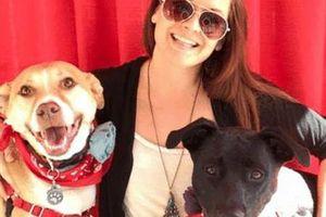 Photo #2: Professional, Positive, Rewards Based Dog Training!