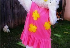 Photo #1: KID PARTY ENTERTAINMENT-CHARACTERS