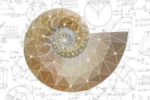 Photo #4: Math Tutor