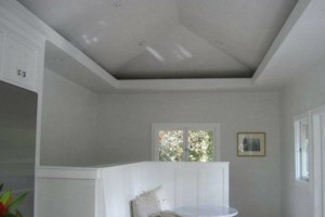 Photo #1: DRYWALL (T-bar ceiling and Metal Stud Framing)