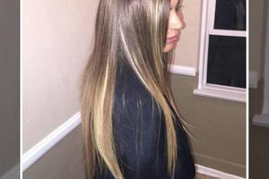 """Photo #5: Weave plus 16"""" hair $225"""