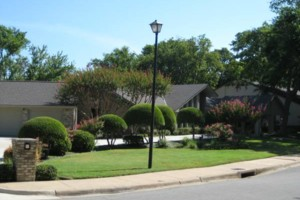 Photo #2: Landscaping, Mowing & Tree Services