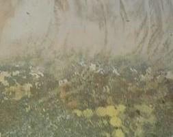 Photo #10: Workman's Comp. Basement Polished Concrete Grinding, Concrete Leveling Sealing Epoxy