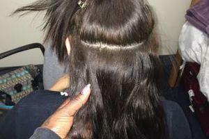 Photo #2: MIcrOlINk AfForDable 320$ With Hair