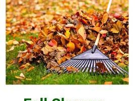 Photo #1: CHEAP Fall Cleanup & Lawn Maintence - Great Professional Services