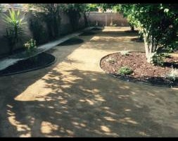 Photo #3: Sod, artificial turf and drought tolerant landscape