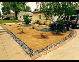 Photo #6: Sod, artificial turf and drought tolerant landscape
