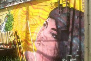 Photo #16: Muralist/scene painter