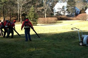 Photo #1: FALL CLEAN-UP BEFORE OR AFTER THANKSGIVING