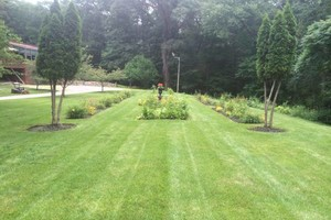 Photo #18: MATIAS LANDSCAPING INC.