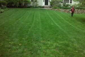 Photo #15: MATIAS LANDSCAPING INC.