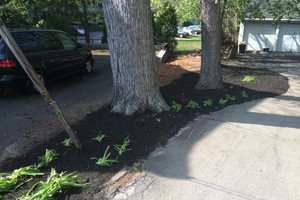 Photo #7: MATIAS LANDSCAPING INC.