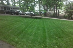 Photo #6: MATIAS LANDSCAPING INC.
