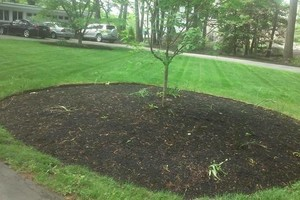 Photo #4: MATIAS LANDSCAPING INC.