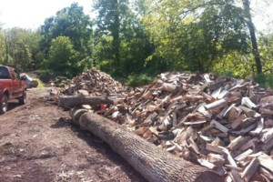 Photo #1: Seasoned Firewood. $125 Mixed Hardwoods.. Free Delivery. Lansdale