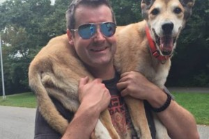 Photo #2: Dogger . BROOKLYN'S FINEST DOG WALKING & PET SITTING