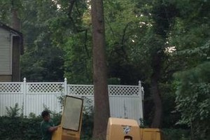 Photo #6: A CUT ABOVE TREE SERVICE OF PA, INC,