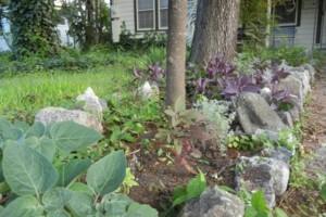 Photo #3: Artemantis Landscape most yards cut for $30