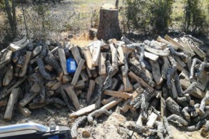 Photo #2: FIREWOOD SERVICE AVAILABLE - POST OAK FIREWOOD