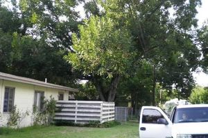 Photo #1: BUDGET FRIENDLY TREE SERVICE!!!!!