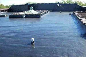 Photo #1: S&Y ROOFING