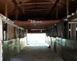 Photo #3: Horse Boarding. 1/2 Mile from LIE