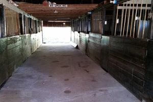 Photo #4: Horse Boarding. 1/2 Mile from LIE