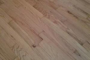 Photo #5: Floor Restoration