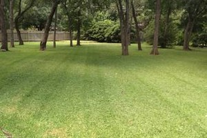 Photo #1: Lawn care done right - mowing, trimming, edging by Coleman