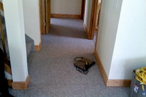 Photo #5: Inquire Carpet Installation