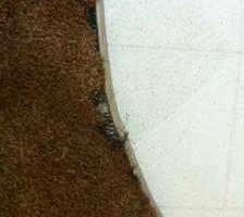 Photo #6: CARPET REPAIR ReStretching - Patching - Seams - Trim