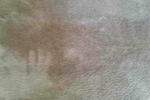 Photo #16: CARPET REPAIR ReStretching - Patching - Seams - Trim