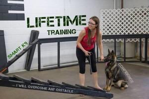 Photo #4: SmartK9 Professional Dog Training