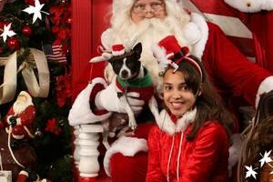 Photo #2: Santa Photos VIP & Family Portraits SAVE BIG