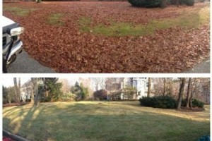 Photo #3: Vottero Landscape. Schedule Your FALL LEAF CLEANUPS Today... Professional & Affordable!