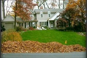 Photo #4: Vottero Landscape. Schedule Your FALL LEAF CLEANUPS Today... Professional & Affordable!