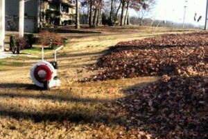 Photo #5: Vottero Landscape. Schedule Your FALL LEAF CLEANUPS Today... Professional & Affordable!